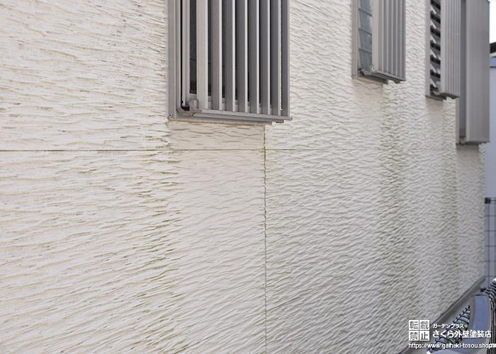 コケの見られる外壁